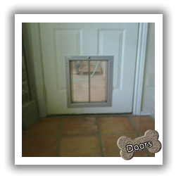 Regular Door Dog Doors & San Antonio Dog Doors pezcame.com