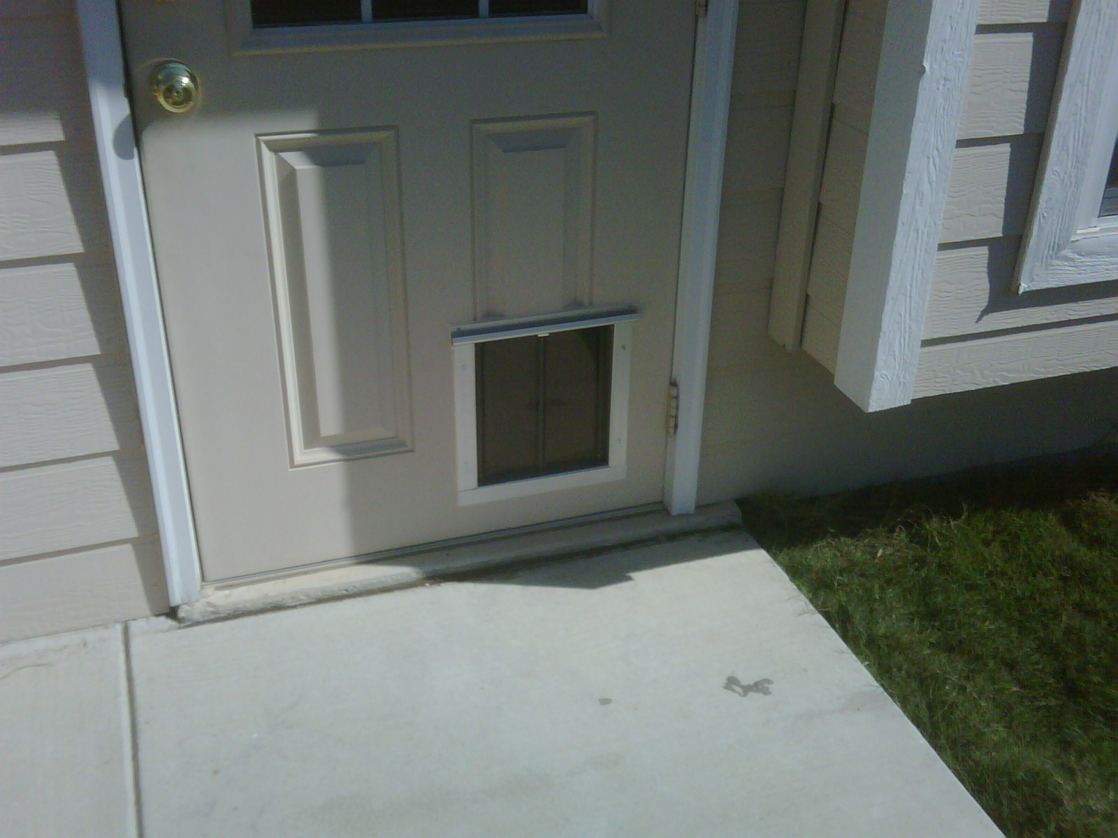 San antonio dog door in standard doors installation gallery for Door installation